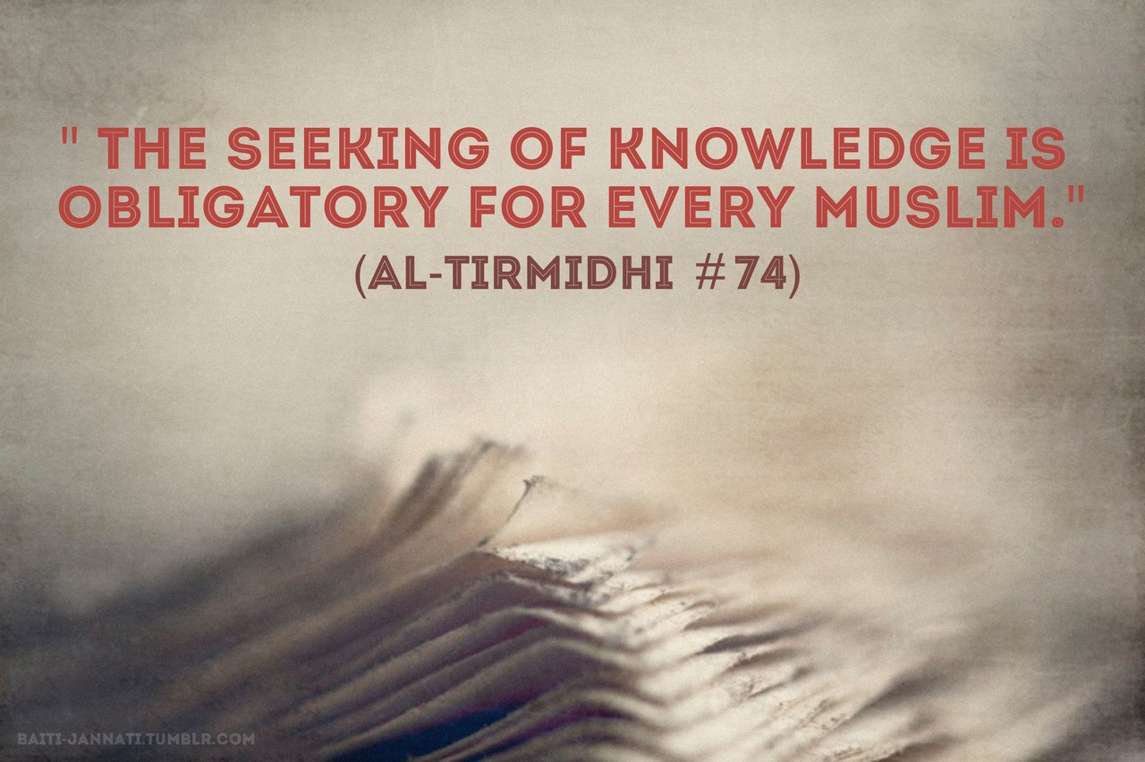 quotes about knowledge - photo #26