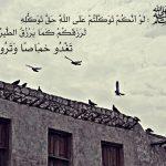 Prophet Muhammad Quote on Tawakkul (Reliance Upon Allah)