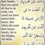 Quran 8:63