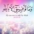 Arabic calligraphy – Quran 11:88